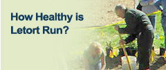 How Healthy is Letort Run?